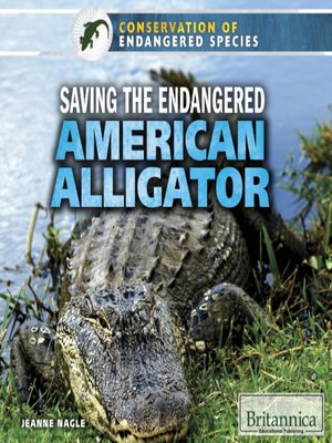 cover image of Saving the Endangered American Alligator