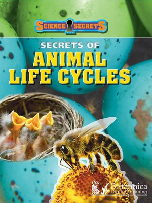 cover image of Secrets of Animal Life Cycles