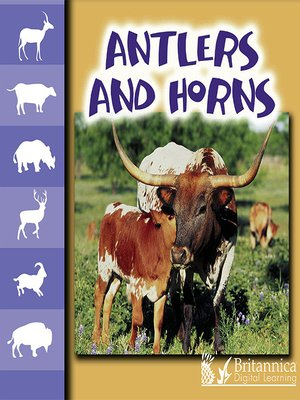 cover image of Antlers and Horns