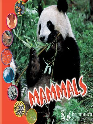 cover image of Mammals