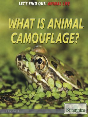 cover image of What Is Animal Camouflage?