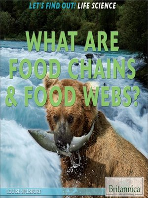 cover image of What Are Food Chains & Food Webs?