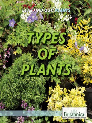 cover image of Types of Plants