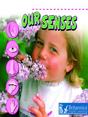 cover image of Our Senses