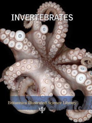 cover image of Invertebrates
