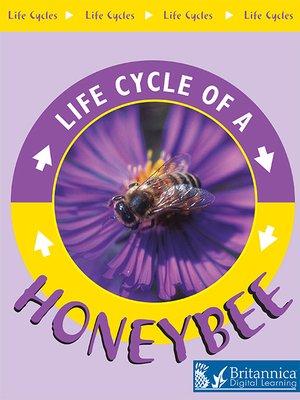 cover image of Honeybee
