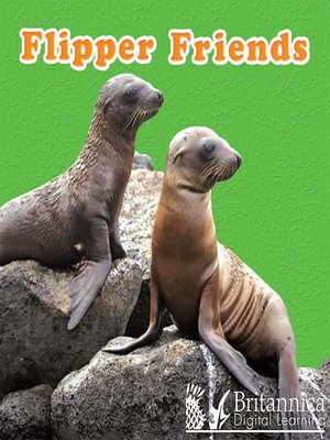 cover image of Flipper Friends
