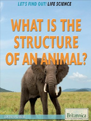 cover image of What Is the Structure of an Animal?