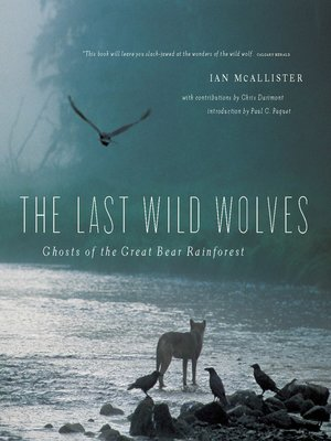 cover image of The Last Wild Wolves