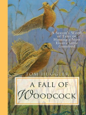 cover image of A Fall of Woodcock