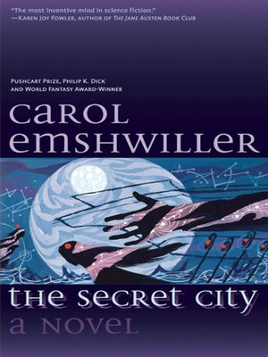 cover image of The Secret City