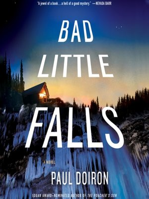 cover image of Bad Little Falls