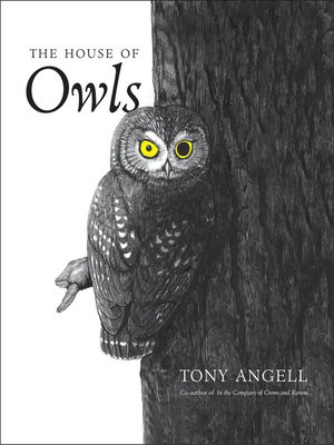 cover image of The House of Owls