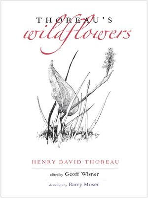 cover image of Thoreau's Wildflowers