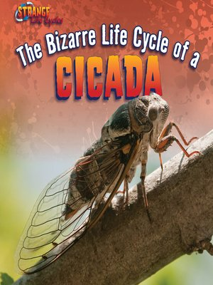 cover image of The Bizarre Life Cycle of a Cicada