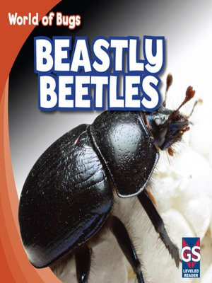 cover image of Beastly Beetles