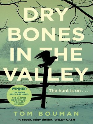 cover image of Dry Bones in the Valley