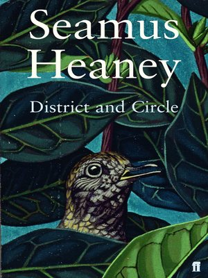 cover image of District and Circle