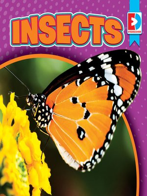 cover image of Insects