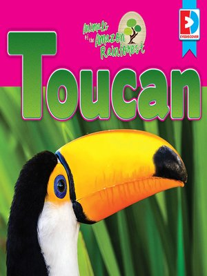 cover image of Animals of the Amazon Rainforest: Toucan