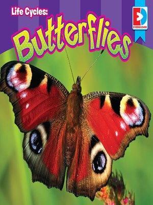 cover image of Life Cycles: Butterflies