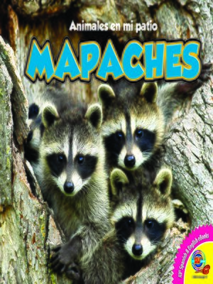 cover image of Mapaches (Raccoons)