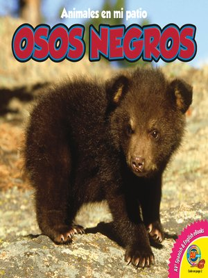 cover image of Osos negros (Black Bears)