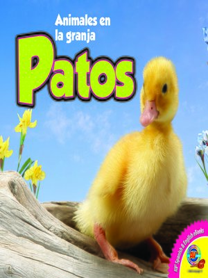 cover image of Patos (Ducks)