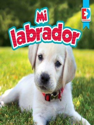 cover image of Mi labrador