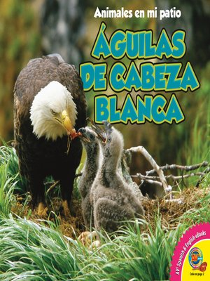 cover image of Águilas de cabeza blanca (Bald Eagles)