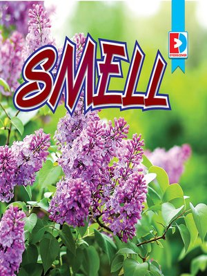 cover image of Smell