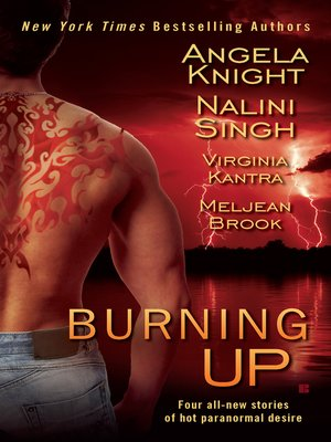 cover image of Burning Up