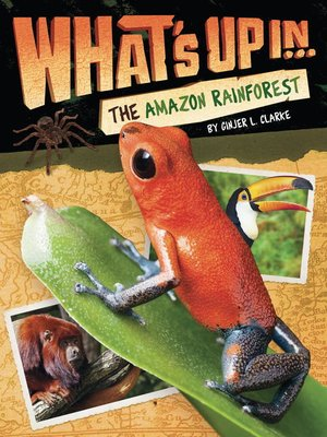 cover image of What's Up in the Amazon Rainforest
