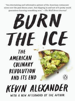 cover image of Burn the Ice