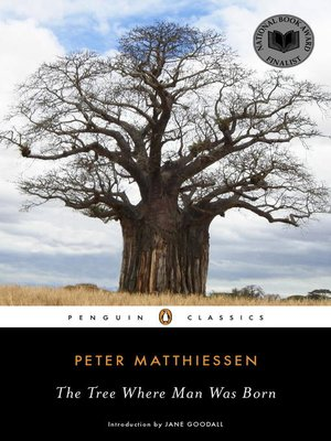 cover image of The Tree Where Man Was Born