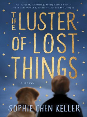 cover image of The Luster of Lost Things