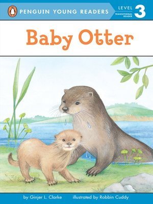 cover image of Baby Otter