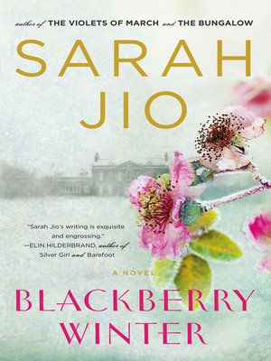cover image of Blackberry Winter