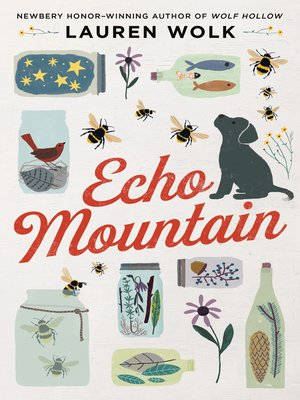 cover image of Echo Mountain
