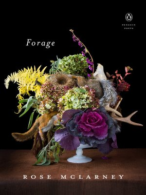 cover image of Forage