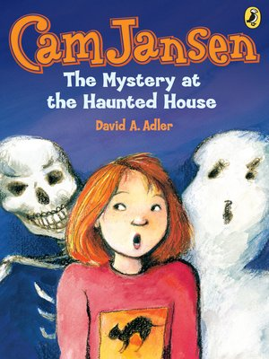 cover image of The Mystery at the Haunted House
