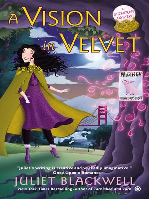 cover image of A Vision in Velvet