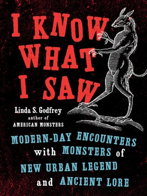 cover image of I Know What I Saw
