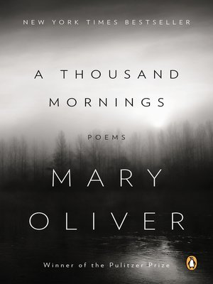 cover image of A Thousand Mornings