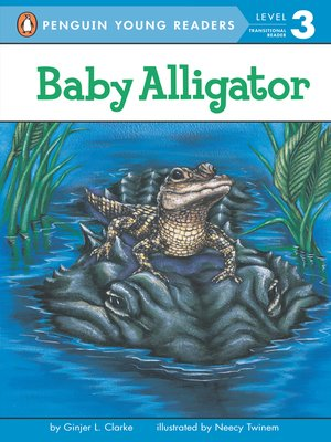 cover image of Baby Alligator