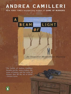 cover image of A Beam of Light