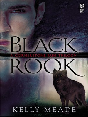 cover image of Black Rook