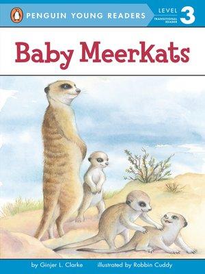 cover image of Baby Meerkats