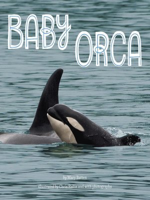 cover image of Baby Orca