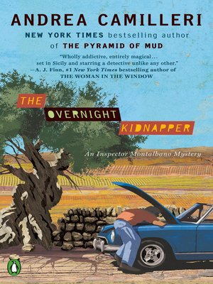 cover image of The Overnight Kidnapper